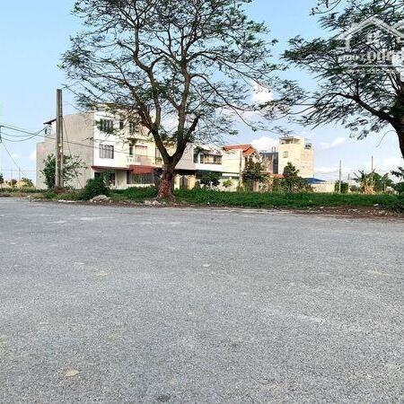 Bán đất TDC Gốc Lim – Đằng Hải – Hải An – Hải Phòng- Ảnh 3