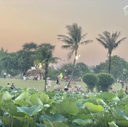 Do dịch mình cần bán gấp cho chủ lô đất 75m2,full thổ cư, ở Bàu Bàng gần quốc lộ 13.- Ảnh 4