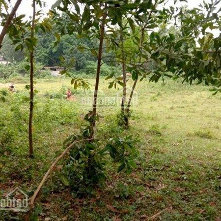 Bán Đất Lương Sơn, Hoà Bìnhdiện Tích11.5Ha Rsx View Núi Đồi, Bám Mặt Đường Liên Huyện- Ảnh 7