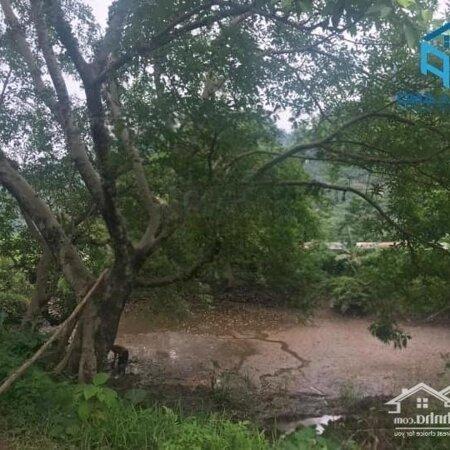 Bán Đất Lương Sơn, Hoà Bìnhdiện Tích11.5Ha Rsx View Núi Đồi, Bám Mặt Đường Liên Huyện- Ảnh 12