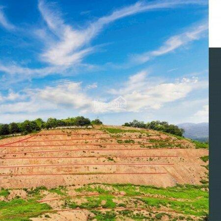 Bán Đất Lương Sơn, Hoà Bìnhdiện Tích11.5Ha Rsx View Núi Đồi, Bám Mặt Đường Liên Huyện- Ảnh 10
