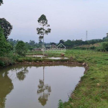 Bán Đất Lương Sơn, Hoà Bìnhdiện Tích11.5Ha Rsx View Núi Đồi, Bám Mặt Đường Liên Huyện- Ảnh 6