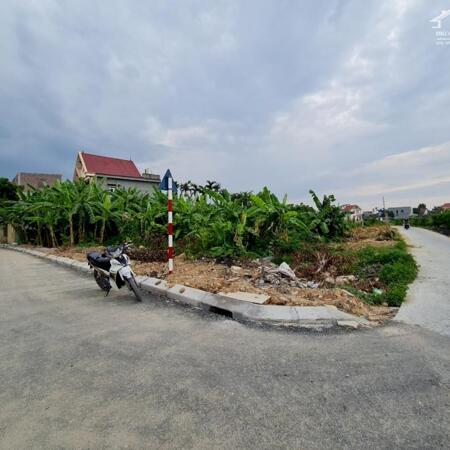 Bán lô đất đẹp ở Lương Quy để lấy tiền xây nhà 3 tầng cưới vợ- Ảnh 2