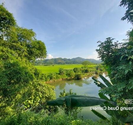 Bán đất Tân lạc dt 4000m bám sông bôi thượng nguồn view cực phẩm đẹp giá siêu rẻ- Ảnh 8