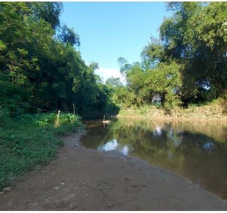 Bán đất Tân lạc dt 4000m bám sông bôi thượng nguồn view cực phẩm đẹp giá siêu rẻ- Ảnh 5