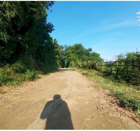 Bán đất Tân lạc dt 4000m bám sông bôi thượng nguồn view cực phẩm đẹp giá siêu rẻ- Ảnh 7