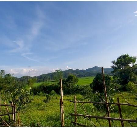 Bán đất Tân lạc dt 4000m bám sông bôi thượng nguồn view cực phẩm đẹp giá siêu rẻ- Ảnh 3