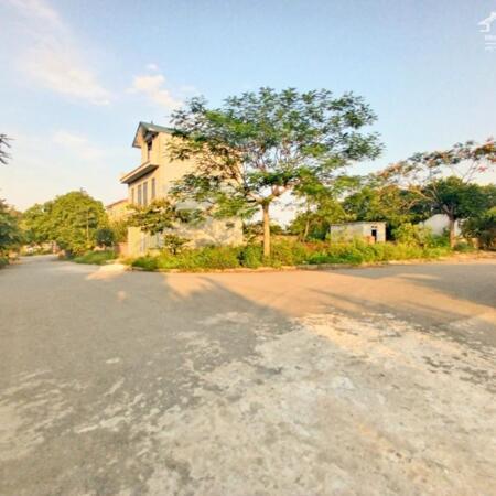 1.050 triệu sở hữu ngay lô đất 60m full thổ cư khu TĐC Phú Cát Hòa Lạc- Ảnh 2