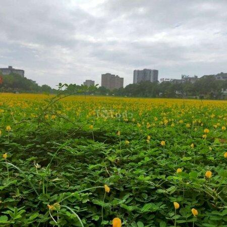 Chung Cư Quận Long Biên 75M² 2Pn- Ảnh 7
