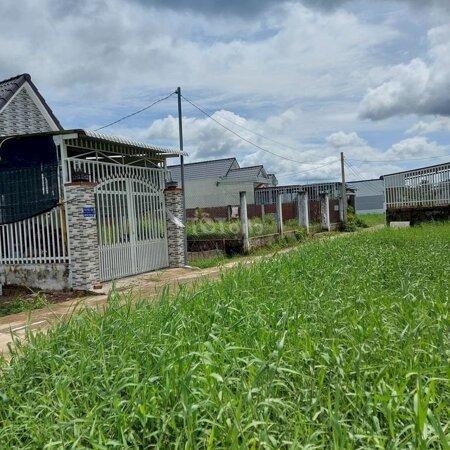Đất Phường Phú Tân Giá Rẻ 450 Triệu/84M2 Tp Btre- Ảnh 3