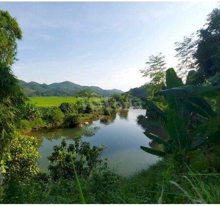 Bán Đất Tân Lạcdiện Tích4000M Bám Sông Bôi Thượng Nguồn- Ảnh 2