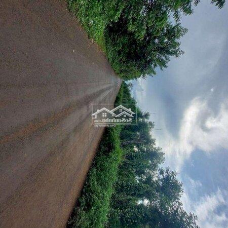 Đất Huyện Cư Kuin 440M2.Thổ Cư 90- Ảnh 2