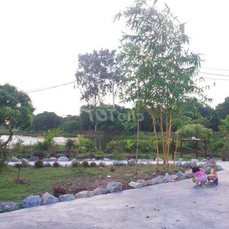 Đất Chuyển Đổi Huyện Ninh Giang 7000M²- Ảnh 2