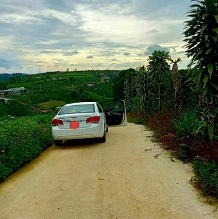 Bán gần 1 sào Hẻm Tản Đà, Phường Lộc Phát, TP. Bảo Lộc - Đối diện khu Sun Valley, Đôi Dép- Ảnh 2