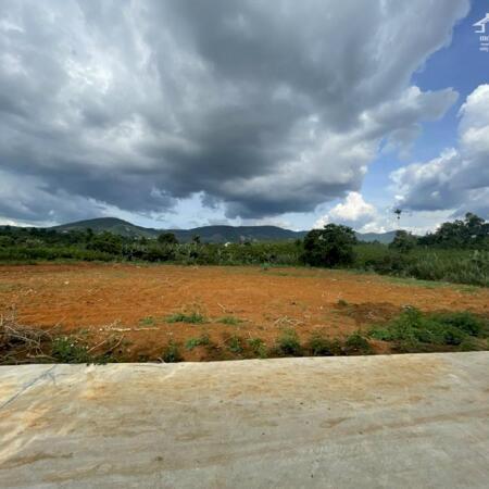 Chỉ khoảng 1 tỉ có ngay đất thổ cư,gần Đà Lạt gần sân bay- Ảnh 1
