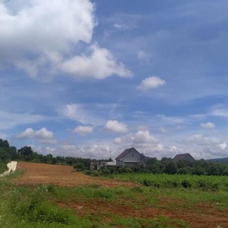 Chỉ khoảng 1 tỉ có ngay đất thổ cư,gần Đà Lạt gần sân bay- Ảnh 2
