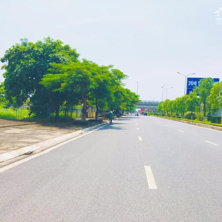 Lô Góc 140m mặt Nguyễn Hữu Cầu, Đồ Sơn, Hải Phòng- Ảnh 3