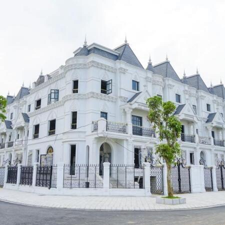 Mua biệt thự có 1-0-2 ngay cửa ngõ cầu Nhật Tân, gần ngay Võ Chí Công với mức giá quá hợp lý- Ảnh 1