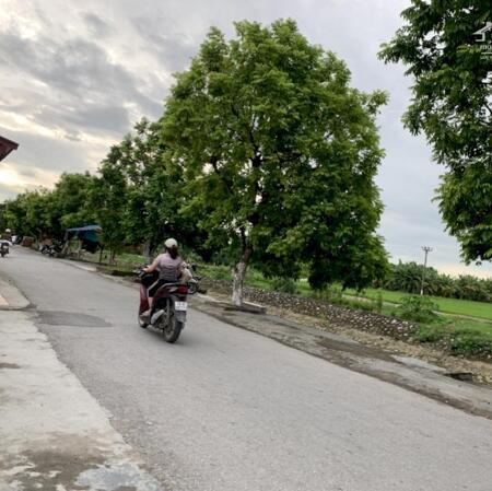 Bán đất thôn Đầm Đền, Xã Hoa Động, Thủy Nguyên, Hải Phòng- Ảnh 1