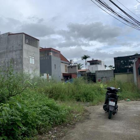 Bán đất thôn Đầm Đền, Xã Hoa Động, Thủy Nguyên, Hải Phòng- Ảnh 2
