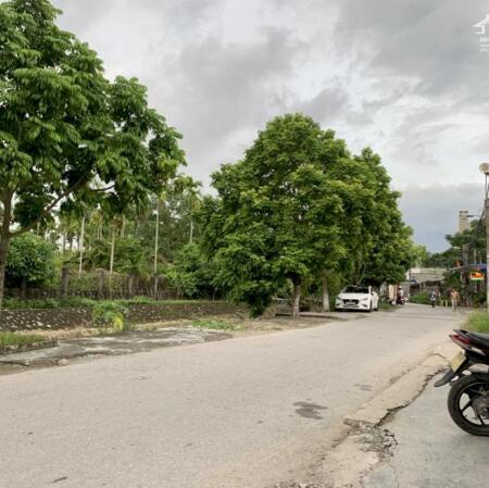 Bán đất thôn Đầm Đền, Xã Hoa Động, Thủy Nguyên, Hải Phòng- Ảnh 3