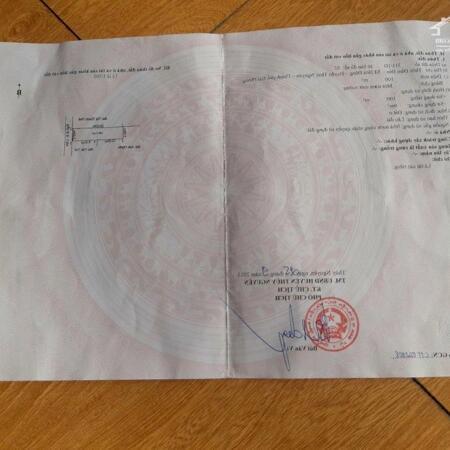 Bán đất thôn Đầm Đền, Xã Hoa Động, Thủy Nguyên, Hải Phòng- Ảnh 4