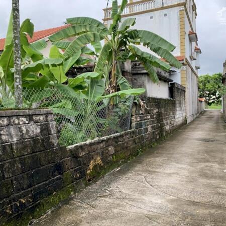 Bán đất thôn Đầm Đền, Xã Hoa Động, Thủy Nguyên, Hải Phòng- Ảnh 5
