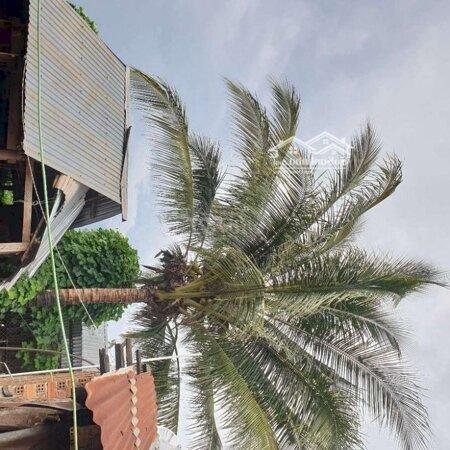 Ban Nhà Vườn Có Thổ Cư 200M View Ao Hồ - Ruộng Lúa- Ảnh 3