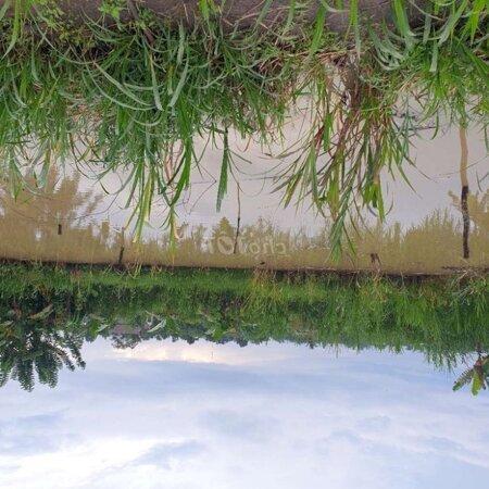 Ban Nhà Vườn Có Thổ Cư 200M View Ao Hồ - Ruộng Lúa- Ảnh 1