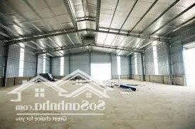 Cho Thuê Nhà Xưởng 500M2, Đối Diện Resort Long Cung, Khu Biệt Thự Thanh Bình, Giá Thuê 25 Triệu/ Tháng- Ảnh 4