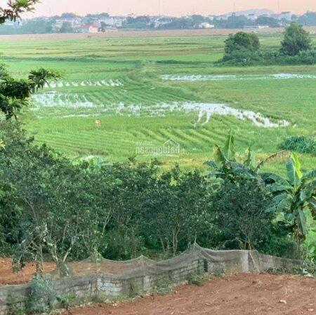 Gia Chủ Gửi Bán Lô Đất 3 Mặt Tiền 104M2 Full Thổ Cư, Gần Ql21, Lương Sơn, Hoà Bình- Ảnh 4