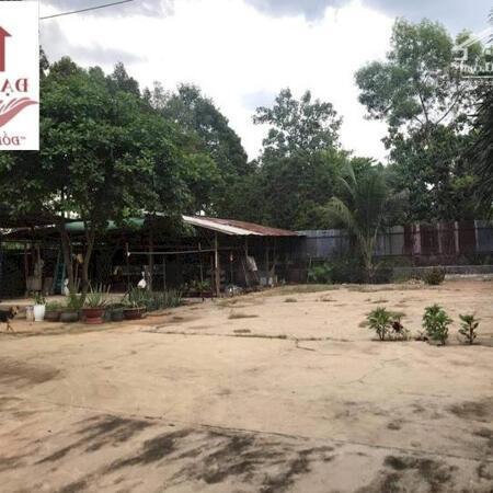 Bỏ Quê lên Phố, cần bán 1 căn nhà đẹp như mơ ở  xã Quang Trung, Thống Nhất, Đồng Nai chỉ 5.2 tỷ- Ảnh 7
