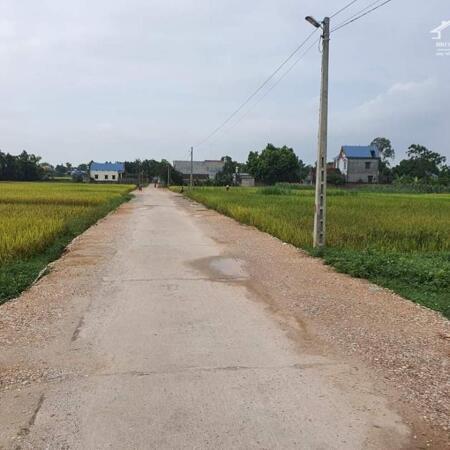 Bán lô đất diện tích 750m rộng 15m có 500m thổ cư bám mặt đường liên thôn rộng gần 8m tại Hồng Tiến, Phổ Yên Thái Nguyên.- Ảnh 1