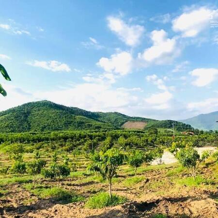 bán 5 lô đất hơn 100ha  Ninh Hòa, Khánh Hòa giá rẻ LH 0788.558.552- Ảnh 4