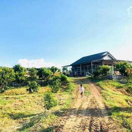 bán 5 lô đất hơn 100ha  Ninh Hòa, Khánh Hòa giá rẻ LH 0788.558.552- Ảnh 1