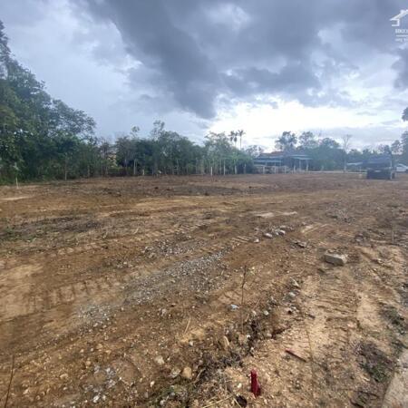 Bán đất ở nông thôn đường 5,5m- Ảnh 1