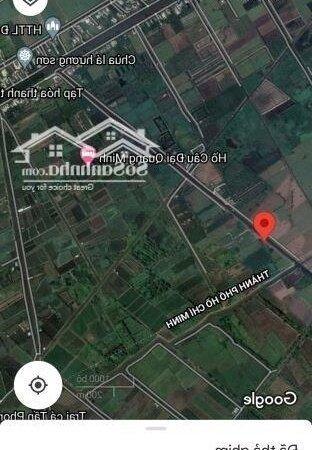 Bán 1000M2 Kênh Độc Lập, Xã Bình Lợi, Bình Chánh- Ảnh 2