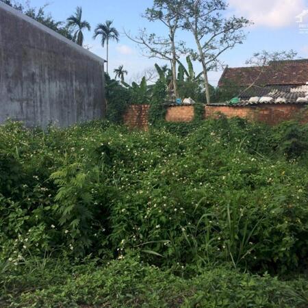 Bán đất hẻm Lê Quý Đôn trung tâm thị trấn La Hà giá 5xx- Ảnh 2