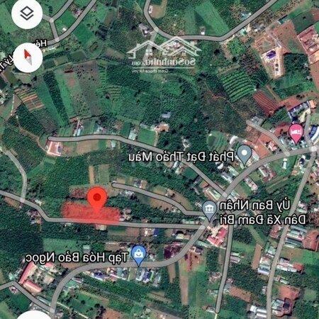 Bán Đất Ngay Trung Tâm Xã Dambri,Ubnd, Trường Học.- Ảnh 1