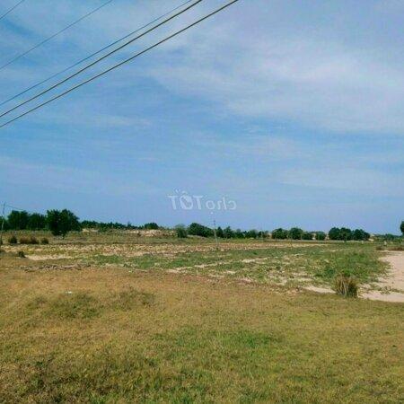 Đất Huyện Bắc Bình 6400M² Xã Phan Thanh Cực Rẻ- Ảnh 3