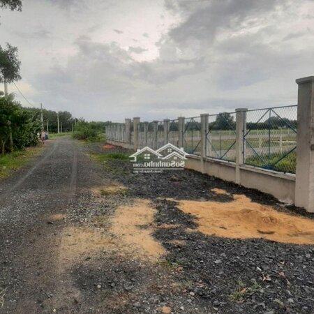 Đất Nông Nghiệp Huyện Củ Chi - Diện Tích 1000M2- Ảnh 6