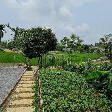 Đất Huyện Lương Sơn 1800M²- Ảnh 5