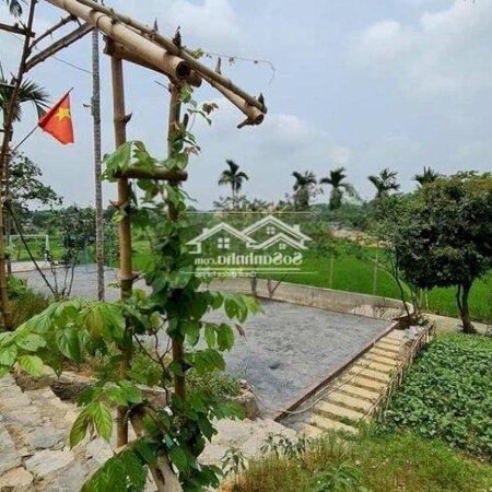 Đất Huyện Lương Sơn 1800M²- Ảnh 4