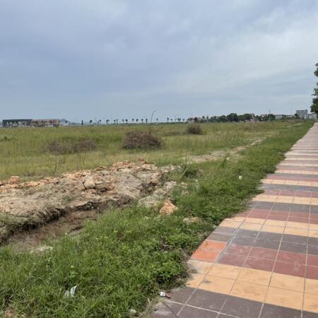Bán 9000m2 đất cụm Công Nghiệp Việt Tiến, đã có hạ tầng, chỉ 80$/m2.- Ảnh 1